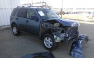 2012 FORD ESCAPE XLT #1272064482