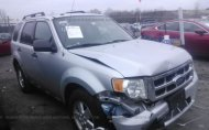 2010 FORD ESCAPE XLT #1272064930