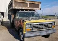 1981 FORD F350 #1347377555
