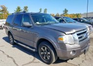 2010 FORD EXPEDITION #1407718375