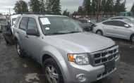 2012 FORD ESCAPE XLT #1455856922