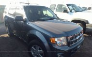 2010 FORD ESCAPE XLT #1477341090