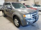 2010 FORD ESCAPE XLT #1511392602