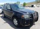 2011 FORD ESCAPE XLT #1531549470