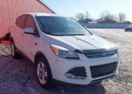 2013 FORD ESCAPE SE #1541132900