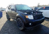 2010 FORD ESCAPE XLT #1575108985