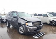 2011 FORD ESCAPE XLT #1662984320