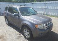 2009 FORD ESCAPE XLT #1542912453