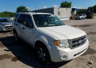 2010 FORD ESCAPE XLT #1557653226