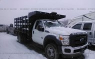 2015 FORD F450 SUPER DUTY #1279968361