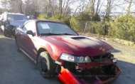 1999 FORD MUSTANG GT #1280569267