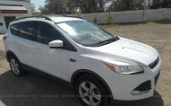 2013 FORD ESCAPE SE #1431042274